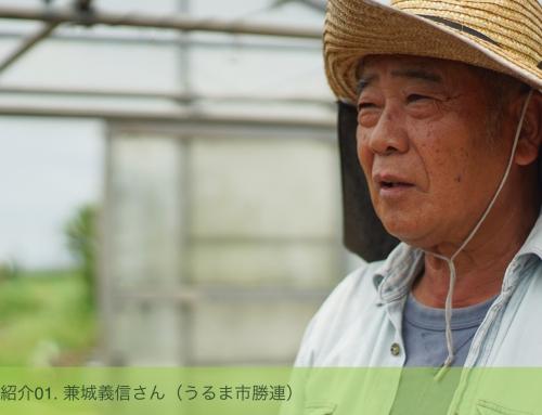 生産者紹介01. 兼城義信さん(うるま市勝連)