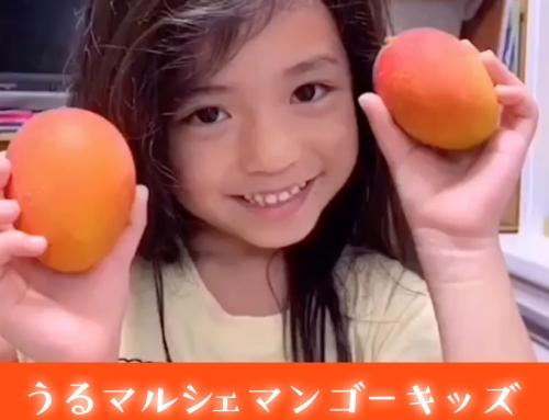 うるマルシェマンゴーキッズ決定いたしました!!!!!!